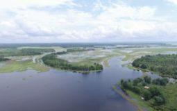 Danau Jempang, Mengenal Danau Terbesar di Sungai Mahakam