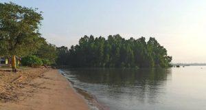 Pantai Sambera, Panorama Keindahan Pantai & Hutan Bakau di Kutai Kartanegara
