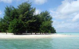 Pulau Panjang, Wisata Bahari Eksotis & Spot Snorkeling Favorit di Berau