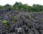 Taman Batu Karst Balocci
